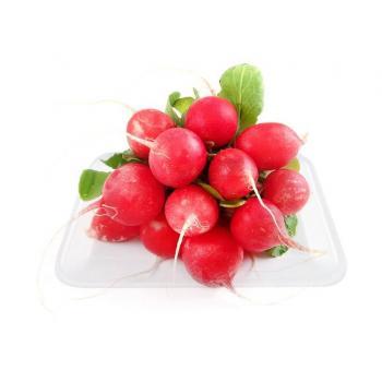 Củ cải đỏ L1 Vineco